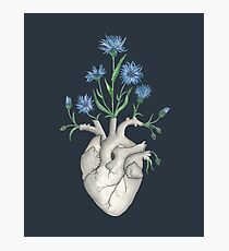 Blumenherz: Menschliche Anatomie Cornflower Flower Halloween Gift Fotodruck