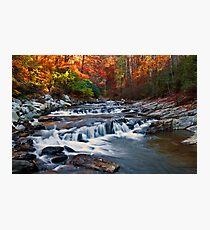 Toccoa Falls - Downstream Photographic Print