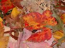 Autumn Leaves by John Schneider