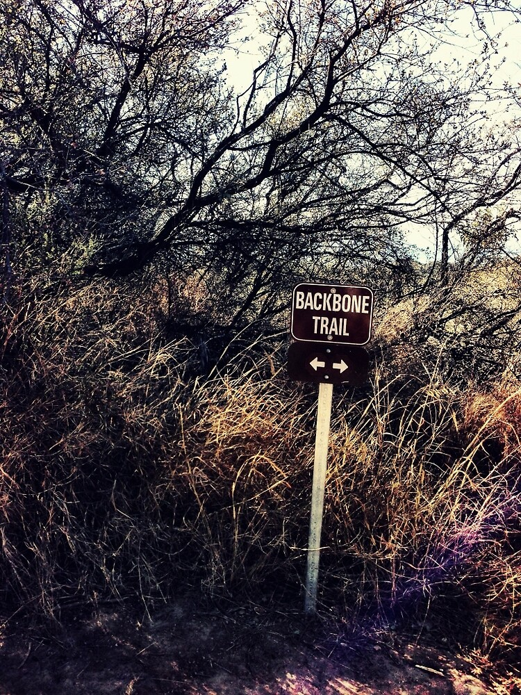 Backbone Trail by walterjuarez