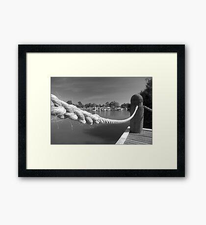 Tied Up Framed Print