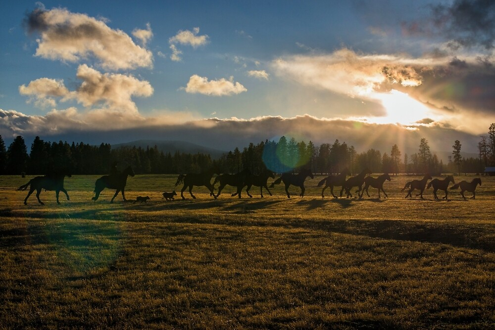 Sunset Ride by walterjuarez