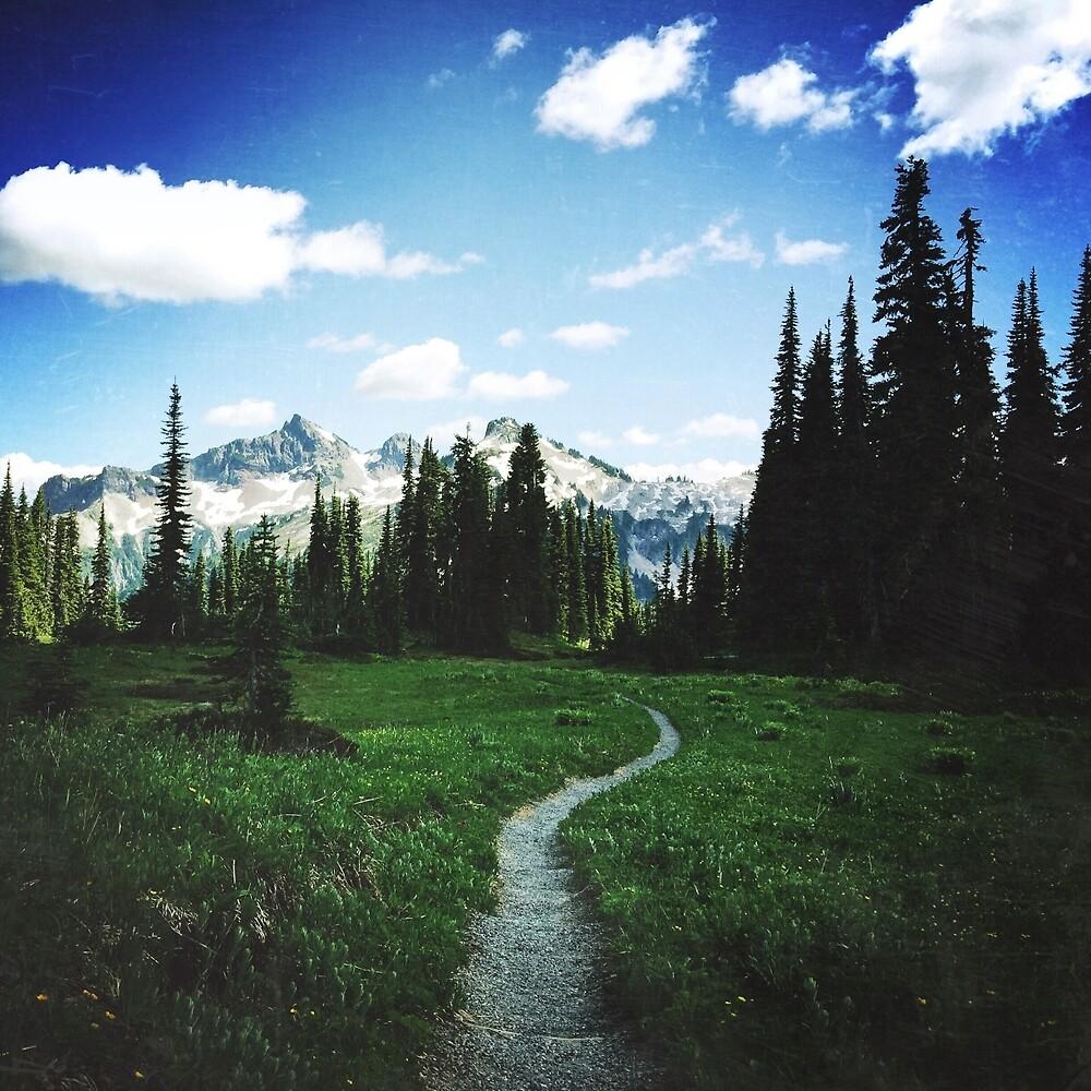 Skyline Trail by walterjuarez
