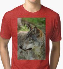 Timberwolf  Tri-blend T-Shirt