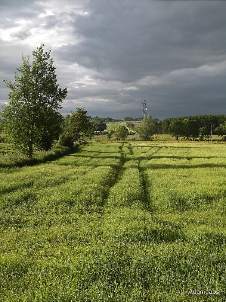 A Midsummer Evening by Adamdabs