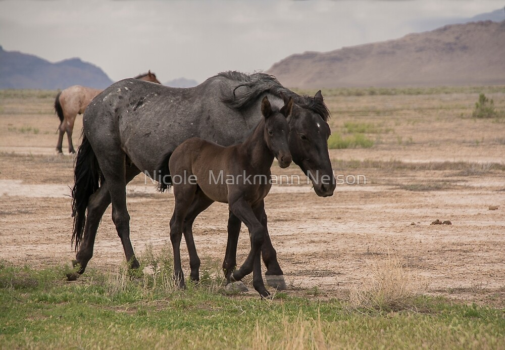 Walking along Mom  by Nicole  Markmann Nelson