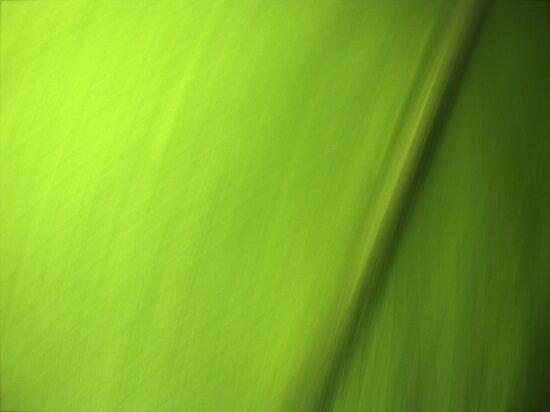 Green by Kitsmumma