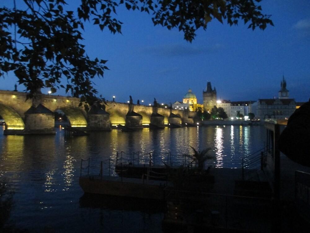 Charles Bridge at Night by maddipetro