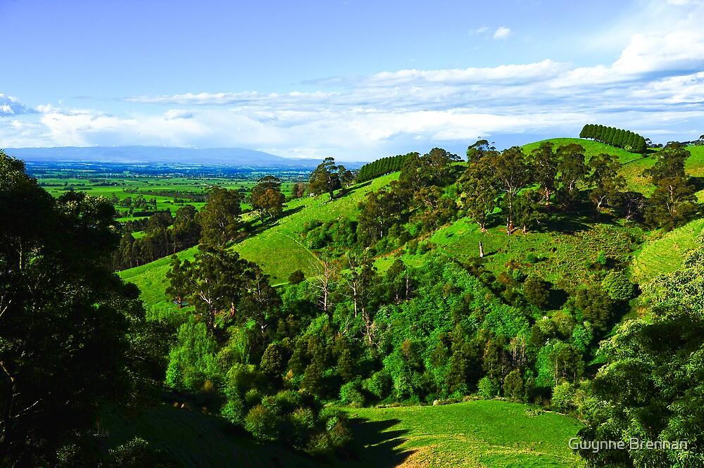 Hills by Gwynne Brennan
