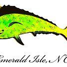 Emerald Isle NC Mahi by Workingdogs