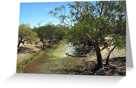Outback Drought by Peter Doré