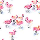 A Flamboyance of Flamingos! by Kendra Shedenhelm