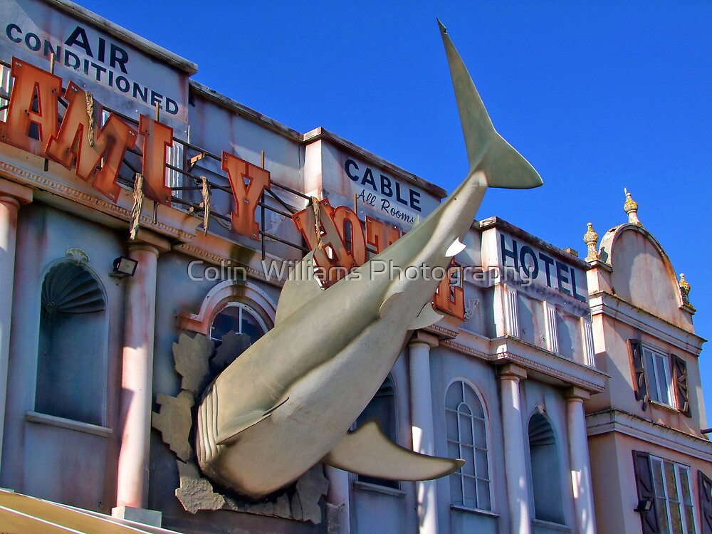 Shark Attack - Amity Hotel - Thorpe Park by Colin  Williams Photography