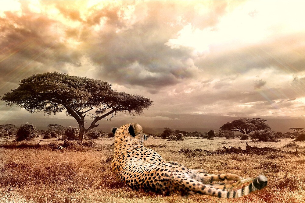 African Landscape by Fjfichman