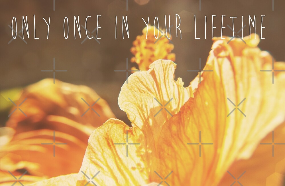Only Once In Your Lifetime by Denise Abé