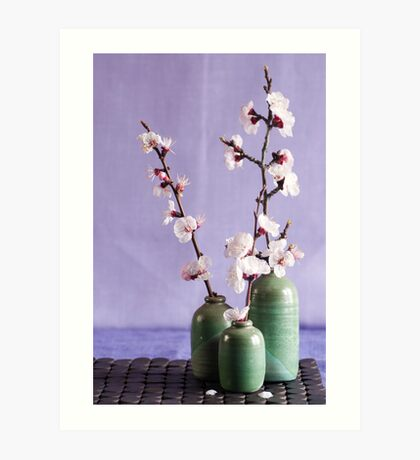 Blossoms and vases Art Print