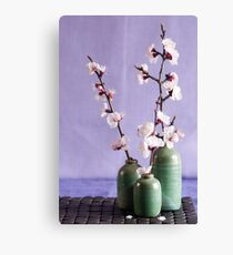 Blossoms and vases Canvas Print