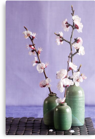 Blossoms and vases by Ilva Beretta