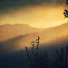 Sunset on Pikes Peak by Elizabeth Weitz