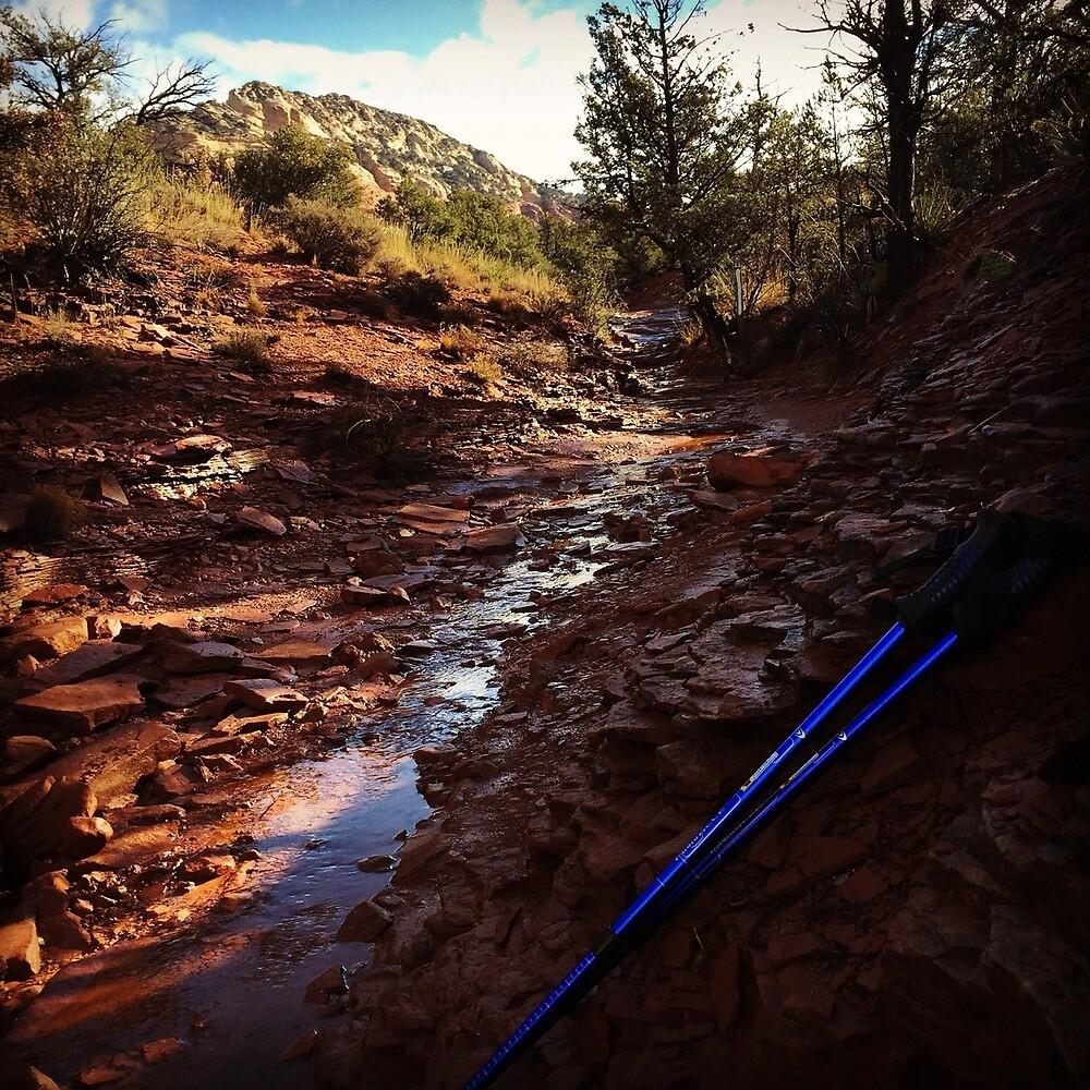 Hiking the Colorado Rocky Mountains  by ashleyschneider