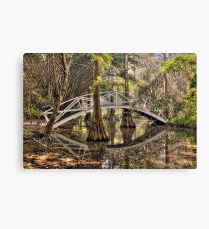 Cypress Swamp - Magnolia Plantation and Gardens Canvas Print