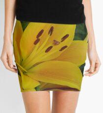 Cheops - Asiatic lily, my garden Mini Skirt