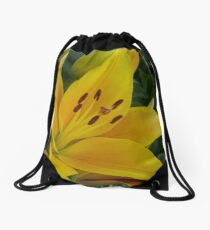 Cheops - Asiatic lily, my garden Drawstring Bag