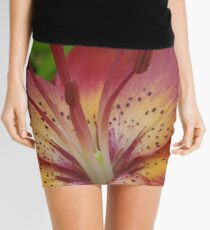 Jacqueline  -  my garden, Ottawa, Ontario Mini Skirt