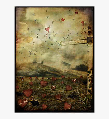 Fallow Hearts Field Photographic Print
