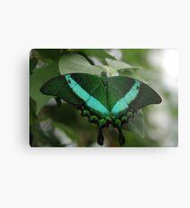 Emerald Swallowtail Metal Print