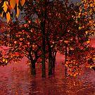 Flood by S McKoy