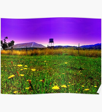 Field of Dandilions Poster
