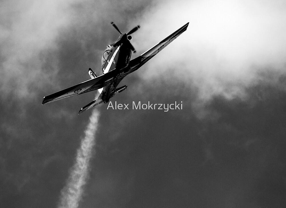 reach for the sky by Alex Mokrzycki