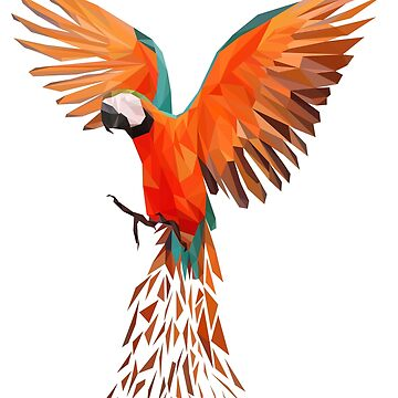 Parrot feathers macaws bird birds wings parrot bird by fxxu