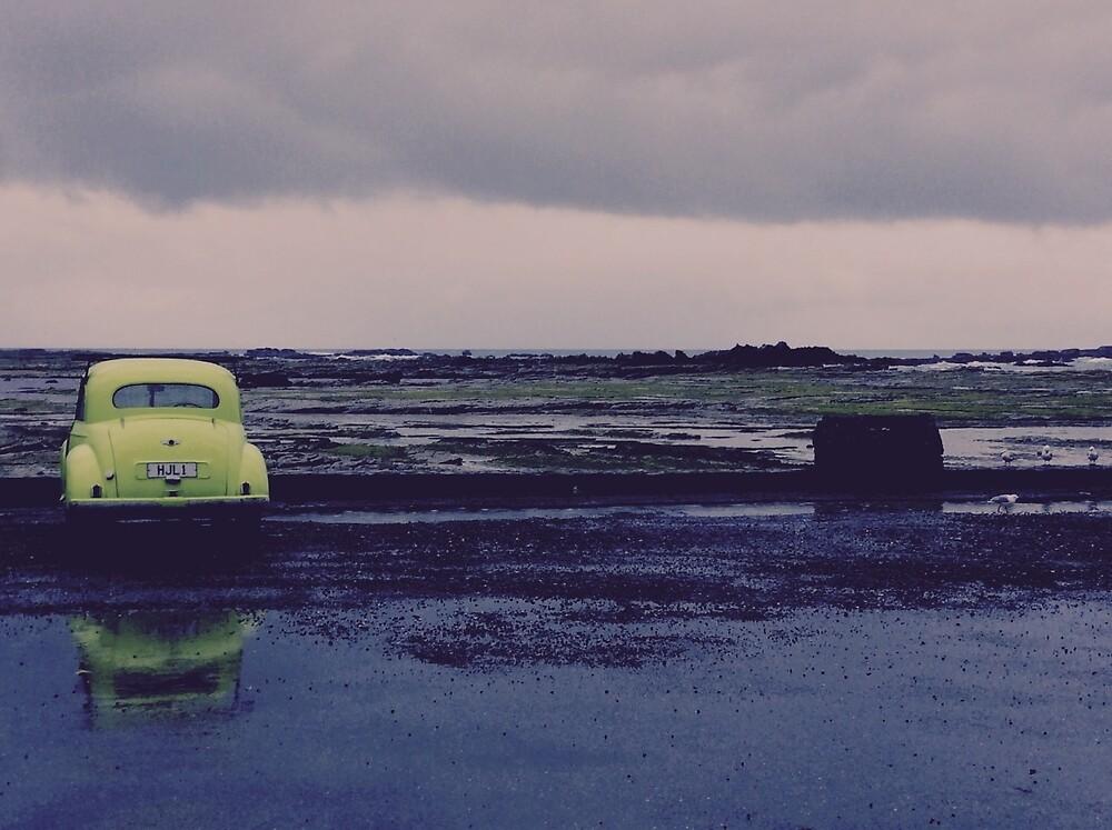 Lost Car  by Gheorghe Reichenbach