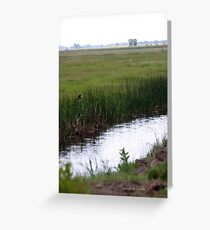 irrigation Greeting Card