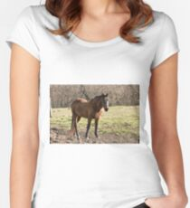 One Fine Lady- Silver Creek Ranch, Ottawa, Ont Women's Fitted Scoop T-Shirt