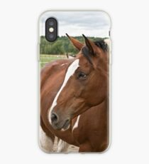For the Love of Lucy iPhone Case