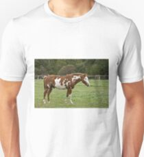 Rodney - Silver Creek Ranch, Ottawa, Ont Unisex T-Shirt