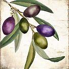 Olive Branch I by mindydidit