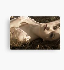 ::WHIMSY:: Canvas Print