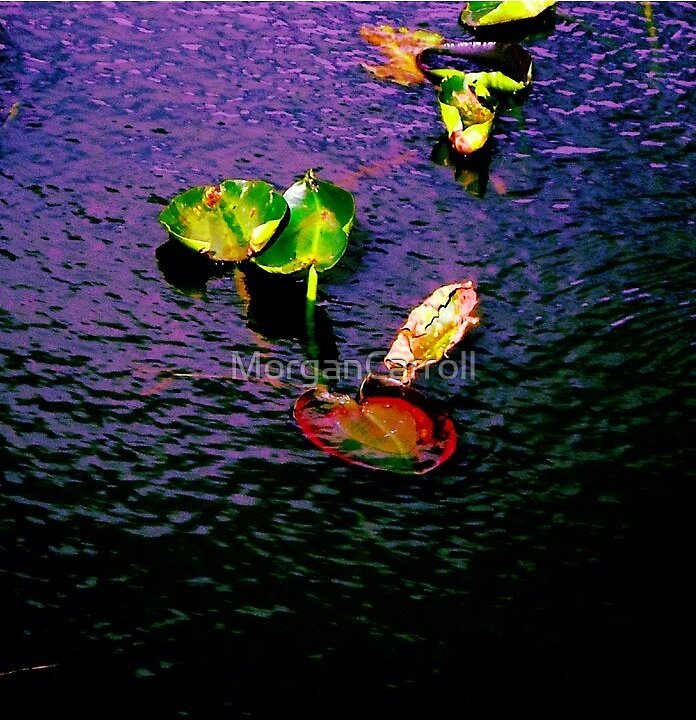 Lilypad Love by MorganCarroll