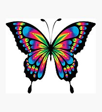 Rainbow Butterfly Photographic Print