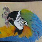Parrot by sunnykcdb