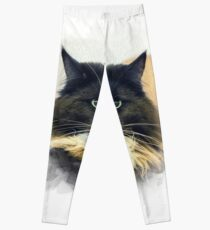 Purebred cat Leggings