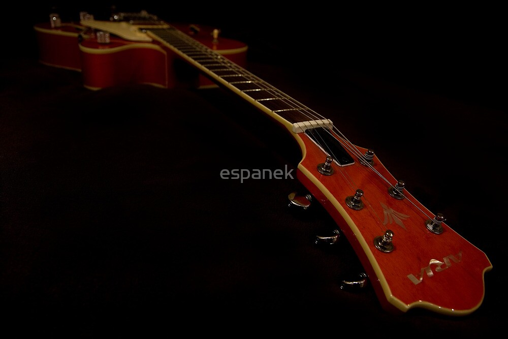 Guitar - Aria Bigsby Licensed by espanek