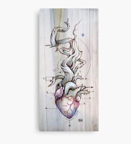 Driftwood Heart 02 Canvas Print