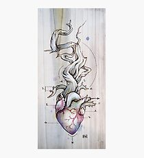 Driftwood Heart 02 Photographic Print