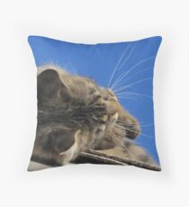 khloe's wiskers Throw Pillow