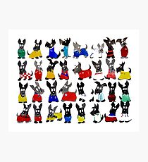 Scottie Dog World Cup 2014 Photographic Print